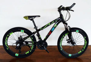 Variable Speed Carbon Steel Series Mountain Bicycle (MTB-025) pictures & photos