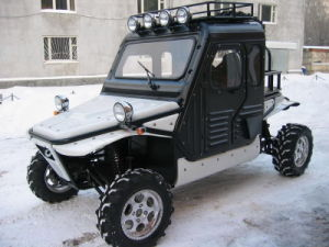 1100CC 4X4 Dune Buggy with Cab Kit pictures & photos