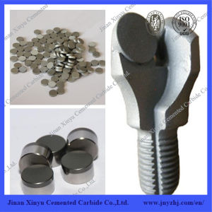 PDC Oil Drill Bits Tungsten Carbide Substrate Tips pictures & photos
