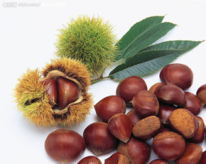 2017 Fresh Sweet Chestnut for Exporting pictures & photos