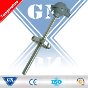Thermocouple with Fixed Flange (CX-WR) pictures & photos