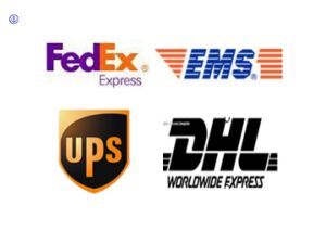 Consolidate Shipping Service Shipment Logistic Services to Africa pictures & photos