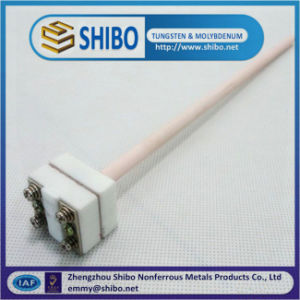 Specializing in High Temperature B Type Platinum Rhodium Thermocouples for Industrial pictures & photos
