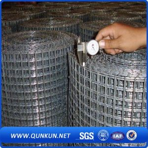 Galvanized Weled Wire Mesh for Security pictures & photos