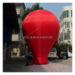 Various Full Color Inflatable Ground Balloon for Advertising