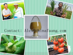 Fungal Diseases Agrochemicals Formulations 2, 4-Dichlorophenoxyacetic Acid 2, 4-D pictures & photos