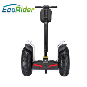 2000-4000W Power and 4-5h Charging Time Chinese Scooter Manufacturers pictures & photos