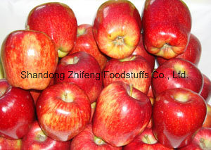 Fresh New Crop Red Star Apple with Good Price pictures & photos