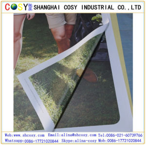 Matt PVC Back Light Flex Coated Banner Fordecoration and Printing pictures & photos