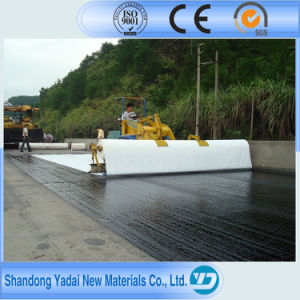 Quality Promised 2017 2mm Fish Farm Pond Liner HDPE Geomembrane pictures & photos