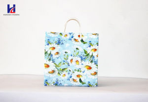 The Latest Popular Non-Woven Shopping Bag pictures & photos