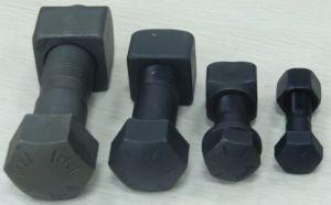 Track Bolt with Nut (1S1859&1S1860) pictures & photos