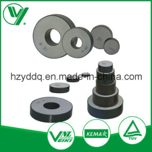 Hangzhou High Quality Metal Oxide Zinc Varistor pictures & photos