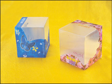 Promotional Gift 3D Lenticular Printed Packaging Box pictures & photos