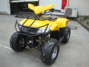 New Cheap 110cc ATV Plastic Body pictures & photos