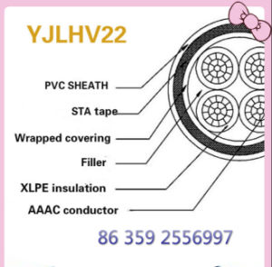 Steel Tape Armored, XLPE Insulation Aluminum Alloy Cable pictures & photos