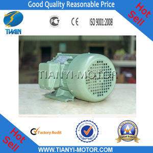 Wholesale European Standard Induction Motor (Y160M1-2)