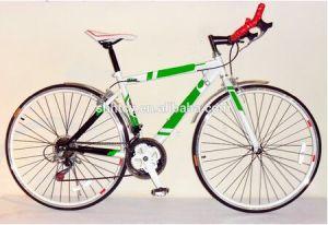 Racing Popular 700C Sport Road/ Bike SH-SP021 pictures & photos