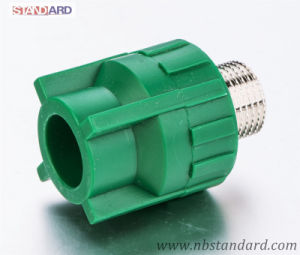 PPR Male Thread Fitting with Brass Male Insert in Green Color pictures & photos