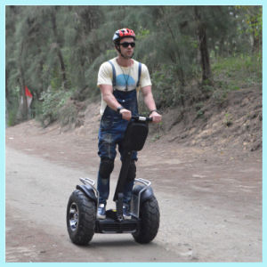 Xinli Escooter Wholesale Escooters, Electric Scooters Prices pictures & photos