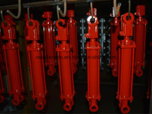 Supplier of Stainless Steel Hydraulic Cylinder pictures & photos