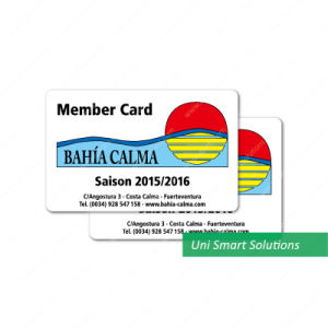 Offset Printed RFID Card with 1k S50 Contactless Chip