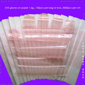 Disposable Plain PE Gloves pictures & photos