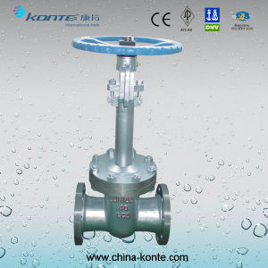 Cryogenic Gate Valve LC3 Pn40 Dn100 pictures & photos