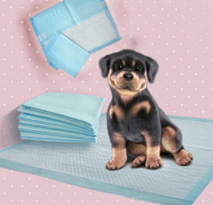 Super Absorbent Polymer Absorb for Pet Pad pictures & photos