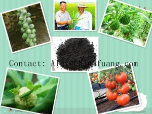 Molasses Fermentation Nutrient Humus Organic Fertilize Molasses pictures & photos