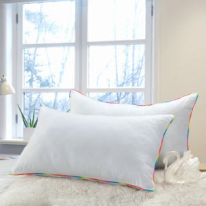 White Goose Down Pillow with Colorful Piping
