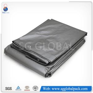 China Factory Polyethylene PE Tarpaulin pictures & photos