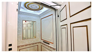 Quality Passenger Lift for Homes pictures & photos