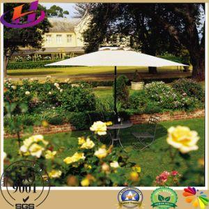 Beautiful Sun Shade Umbrella From Direct Factory