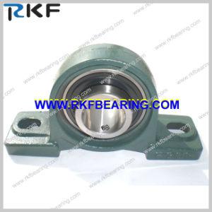 Ucp Plummer Block Bearing Ucp309 NSK THK NTN Asahi