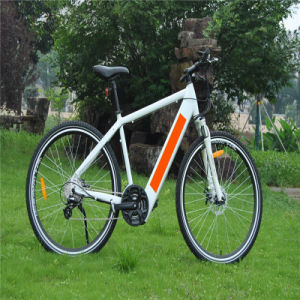 700cc Electric Mountain Bikes for Men pictures & photos