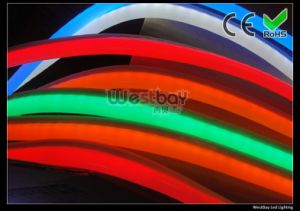 Red, Orange, White, Blue, Green Neon Tube in 110V 240V