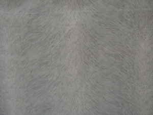Fabric (DSC00571)