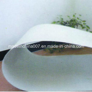 Green Environmental Magnesium Oxide Fireproof Board pictures & photos