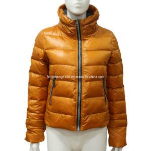 Ladies High Quality Zipper Down Jacket/ Coat (AH-0448)