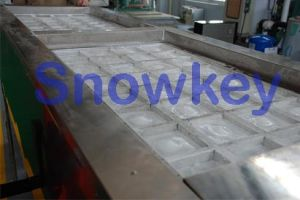Block Ice Maker pictures & photos