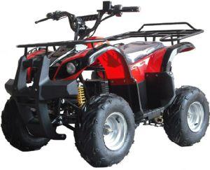 Electric ATV(E-002)