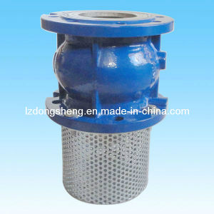 Cast Iron Foot Check Valve Spring Loaded Type Pn16 pictures & photos