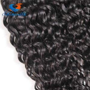 Natural Wave Brazilian Virgin Human Hair Extension pictures & photos