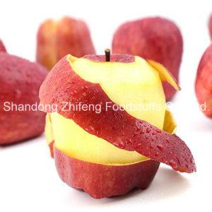 China Shandong Huaniu Apple pictures & photos