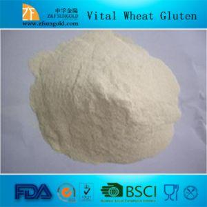 Vital Wheat Gluten Best Fuctional&Nutritional Ingredients