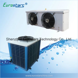 Cold Storage Condensing Unit Refrigeration Equipment pictures & photos