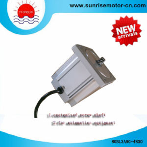 80bl3a90-4838 BLDC Motor/DC Motor Electric Motor pictures & photos