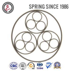 Auto Parts Elestic Element Oil Seal Spring pictures & photos