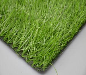 Best Quality Football Artificial Grass (SB) pictures & photos